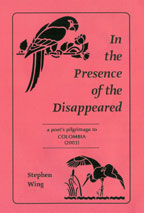 In the Presence of the Disappeared